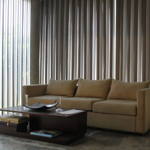 Light & Shade - Duo Blinds