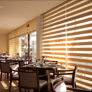 Light & Shade Zebra Blinds